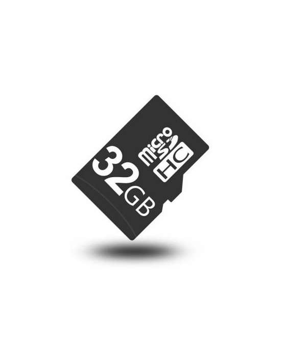 Carte mémoire Micro SD 32 Go