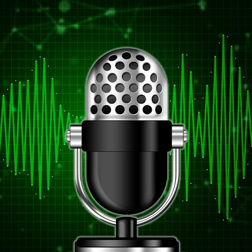 Enregistreur vocal : Mode détection et mode continu simple et facile d'utilisation